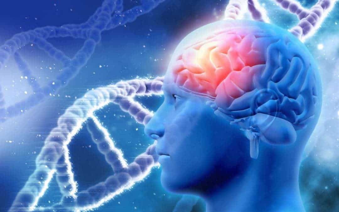 Alzheimer's: Targeting ApoE gene may 'stop the disease'