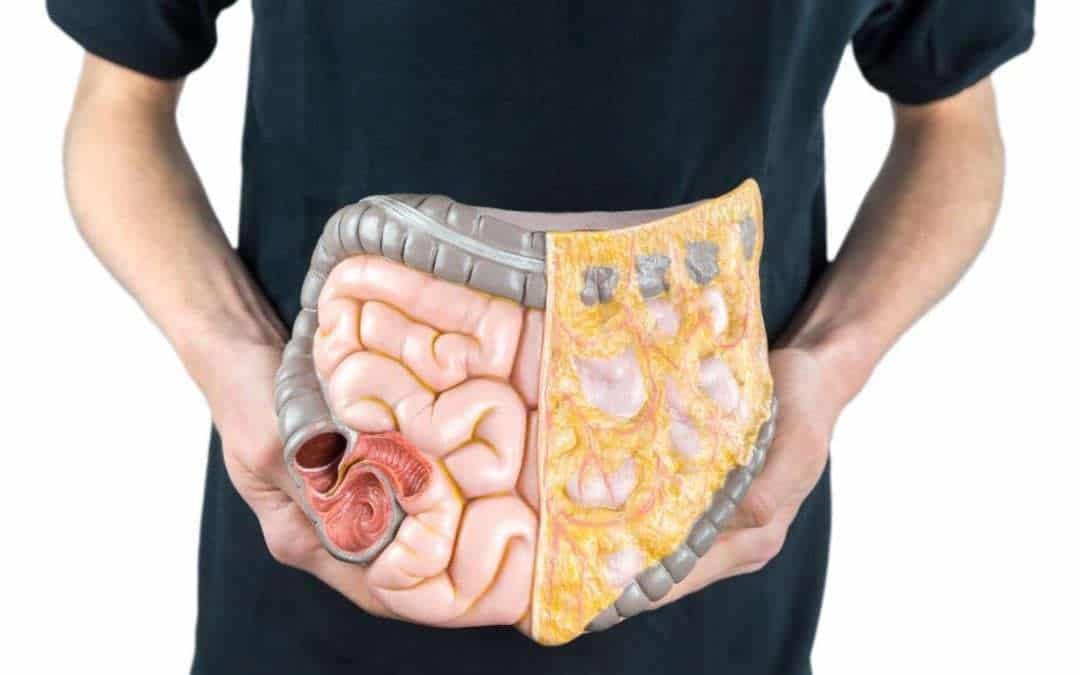 How long does digestion take? Tips for better digestion