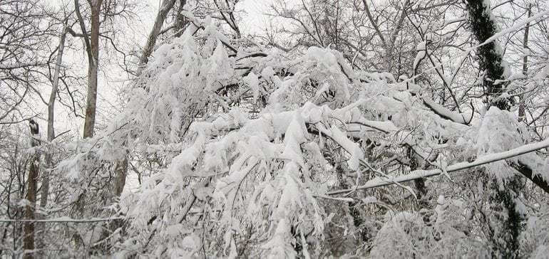 Winter is coming: How to protect workers, sites and schedules